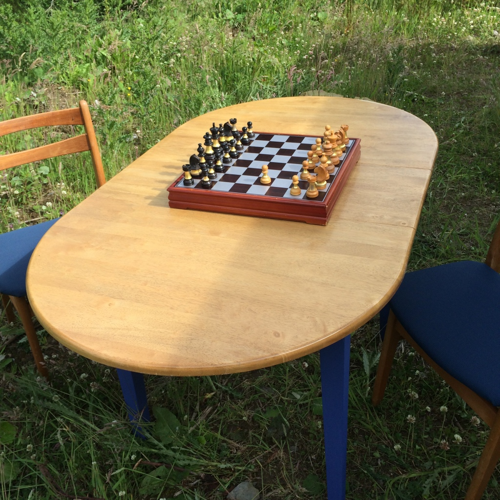 A game of chess in the field perhaps?